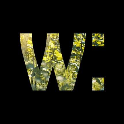 Wilsonic Festival 2012