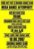 PARK ART MEGA DANCE AFTERPARTY